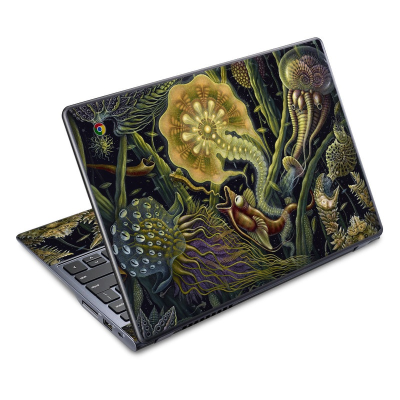 Light Creatures Acer C720 Chromebook Skin