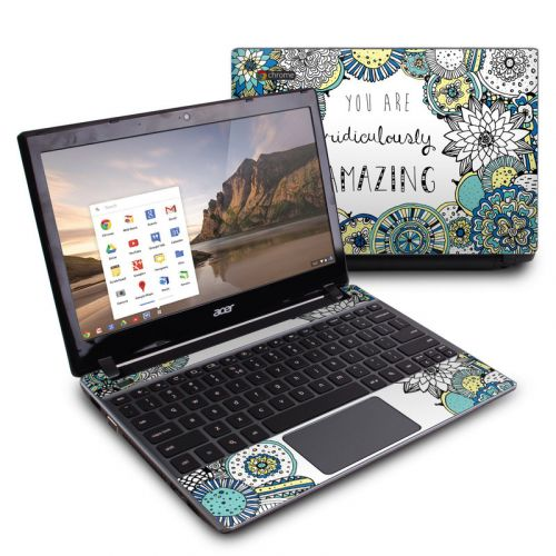 You Are Ridic Acer C7 Chromebook Skin