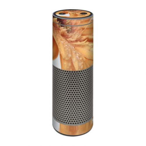 Golden Gerbera Amazon Echo Plus Skin