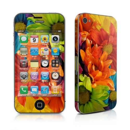 Colours iPhone 4s Skin