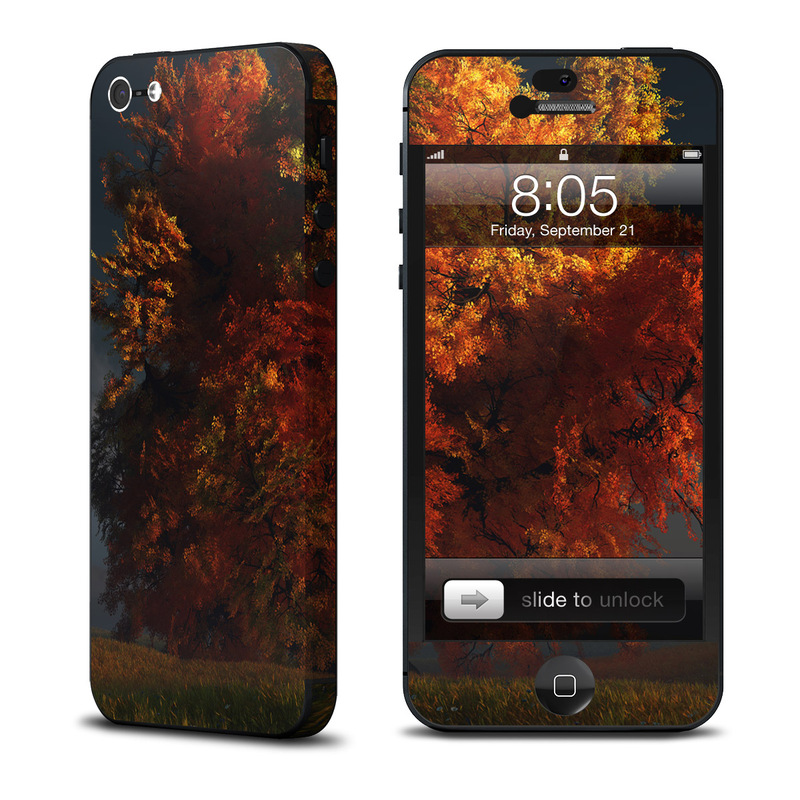 Airlines iPhone 5 Skin