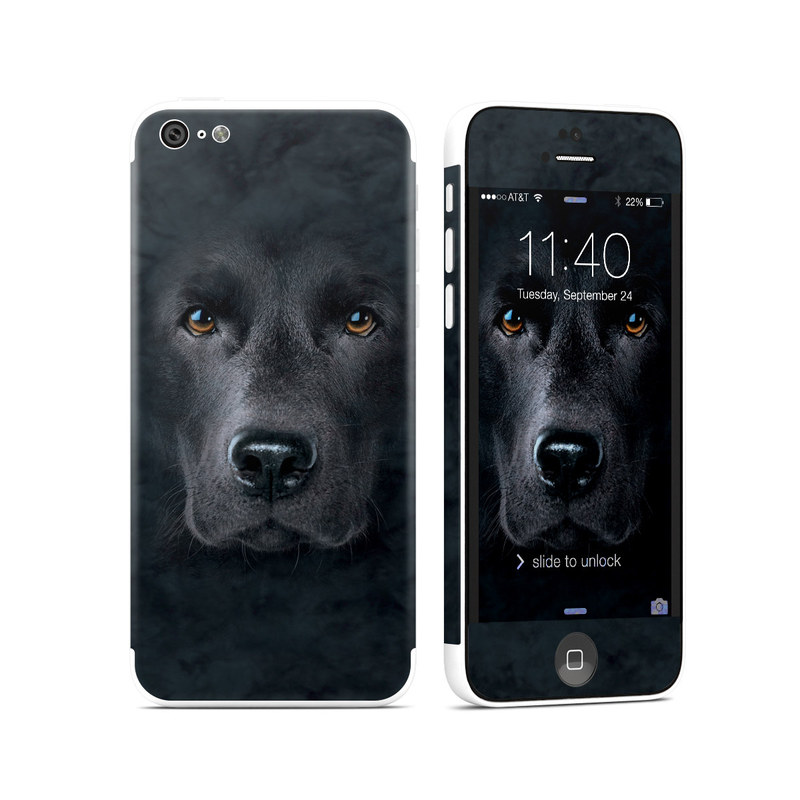 Black Lab iPhone 5c Skin