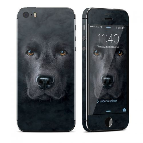 Black Lab iPhone SE, 5s Skin
