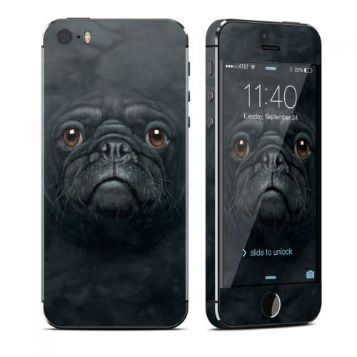 Black Pug iPhone SE, 5s Skin