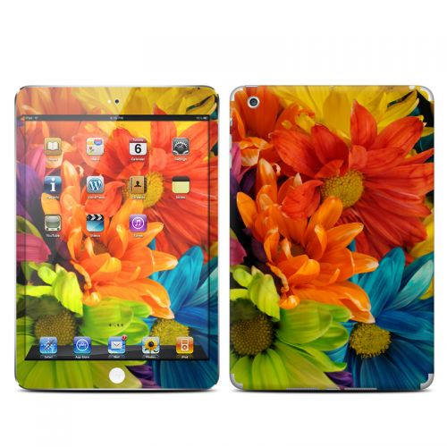 Colours iPad mini Skin