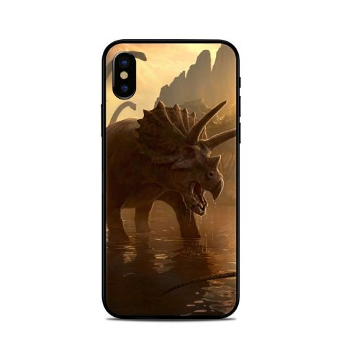 Cretaceous Sunset iPhone X Skin