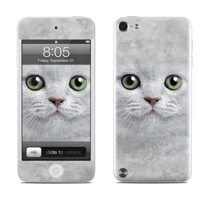 Grey Kitty iPod touch 5th Gen Skin