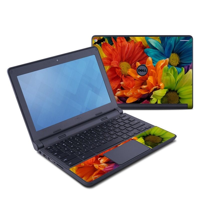 Colours Dell Chromebook 11 Skin