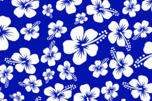 Samsung Omnia SGH-i900 Skin design of Blue, Pattern, Plant, Flower, Petal, Design, Wildflower, Floral design, Black-and-white, Visual arts with blue, white colors