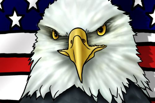 Design of Bald eagle, Eagle, Bird, Bird of prey, Accipitridae, Beak, Accipitriformes, Sea eagle, Flag with white, gray, blue, yellow, red colors