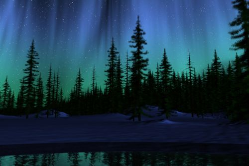 Design of Aurora, Nature, Sky, shortleaf black spruce, Natural landscape, Tree, Wilderness, Natural environment, Biome, Spruce-fir forest with blue, purple, green, black colors