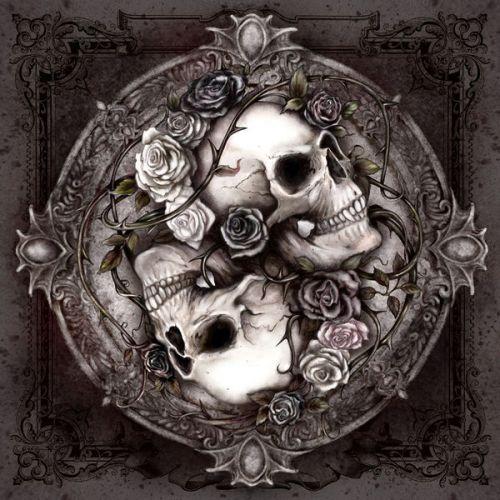 Google Nexus S Skin design of Skull, Bone, Illustration, Font, Still life photography, Photography, Still life, Art, Monochrome, Circle with black, white, brown, pink colors