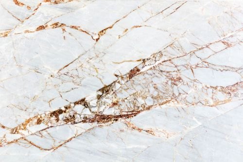 Design of White, Branch, Twig, Beige, Marble, Plant, Tile with white, gray, yellow colors
