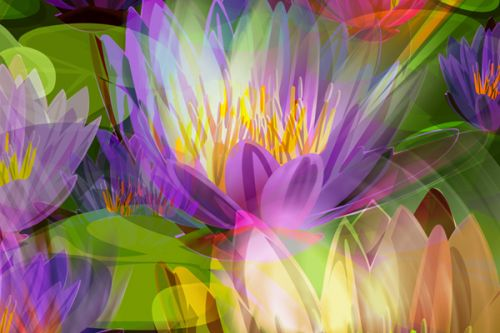 LG Lotus Skin design of Flowering plant, Flower, Petal, Violet, Aquatic plant, Purple, water lily, Plant, Botany, Close-up with gray, green, black, purple, red colors