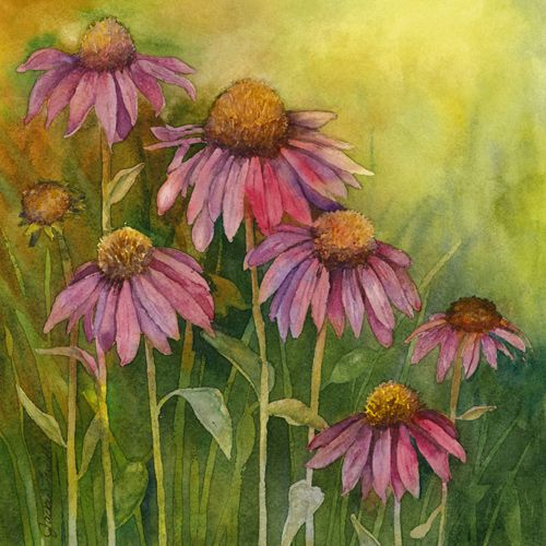 Design of Flowering plant, Purple coneflower, Coneflower, Flower, Plant, Watercolor paint, Wildflower, black-eyed susan, Petal, Daisy family with black, green, red, gray, purple colors