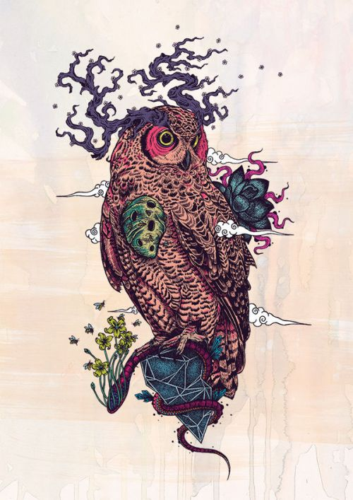 Design of Owl, Bird, Illustration, Art, Bird of prey with pink, gray, black, red, yellow colors