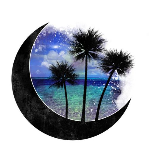Design of Nature, Sky, Palm tree, Tree, Arecales, Landscape, Tropics, Plant, Vacation, World with black, white, green, blue, purple colors