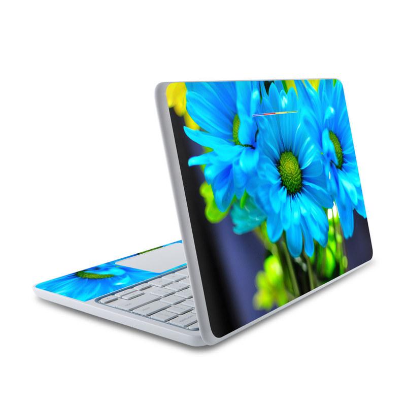 In Sympathy HP Chromebook 11 Skin