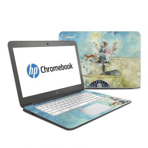 Libra HP Chromebook 14 Skin