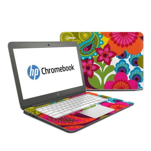 Raj HP Chromebook 14 Skin