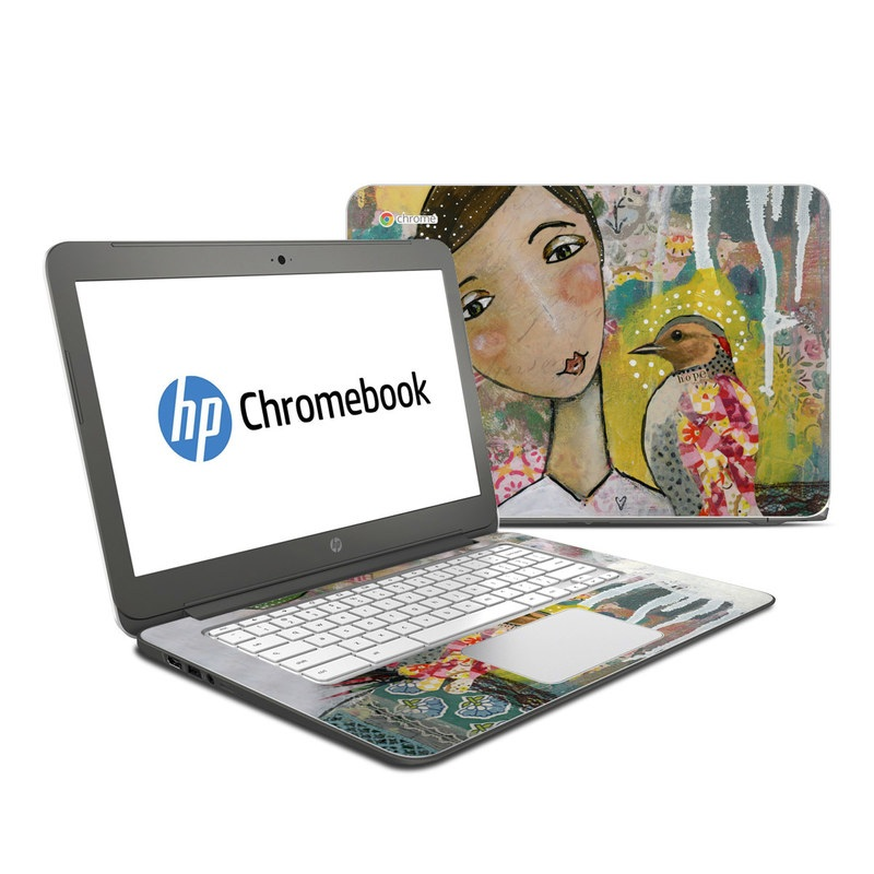 Seeker of Hope HP Chromebook 14 Skin