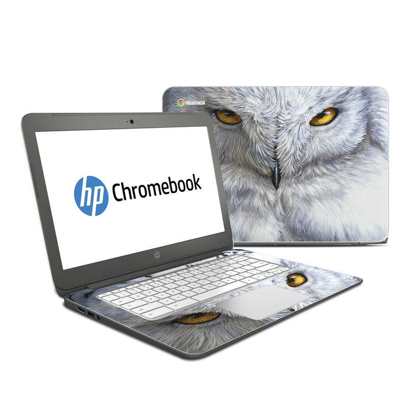 Snowy Owl HP Chromebook 14 Skin