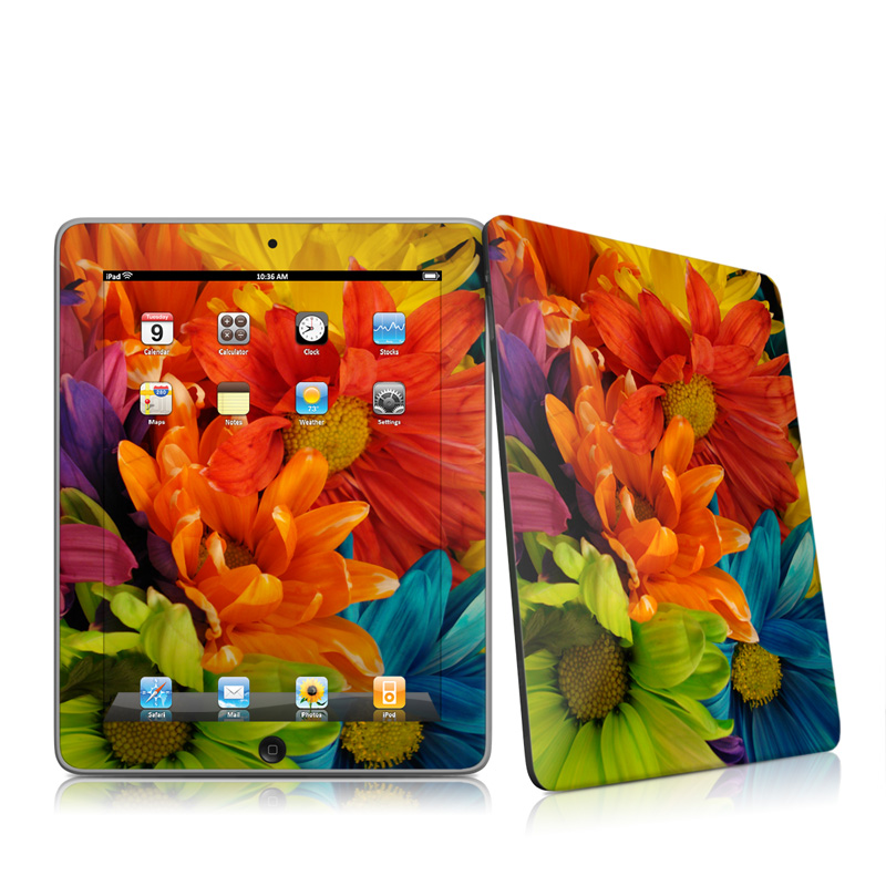 Colours iPad 1st Gen Skin