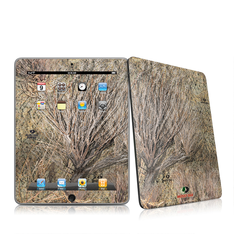 Brush iPad 1st Gen Skin
