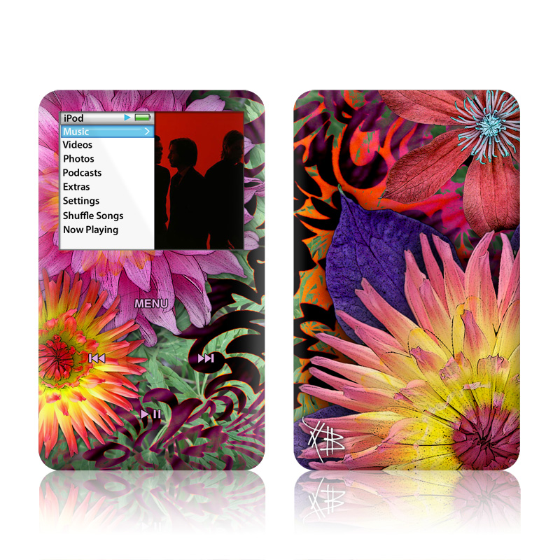 iPod classic Skin design of Flower, Petal, Gazania, Plant, Pattern, Flowering plant, Purple, Floral design, Pink, Design with black, red, green, purple, gray colors