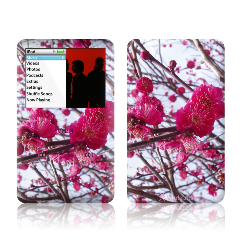 Spring In Japan iPod classic Skin
