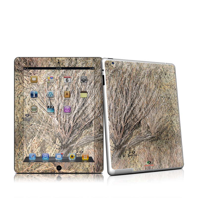 Brush Apple iPad 2 Skin