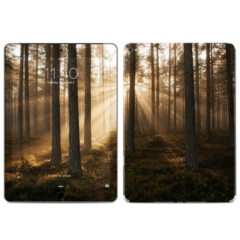 Misty Trail iPad Air 2 Skin