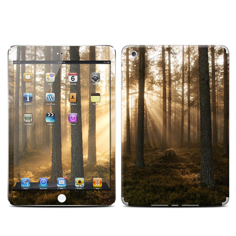 Misty Trail iPad mini Retina Skin