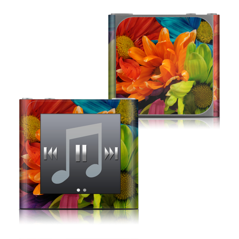Colours iPod nano 6th Gen Skin