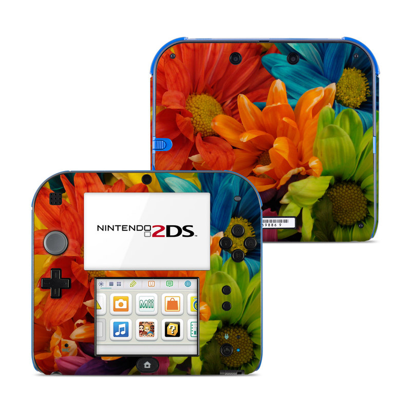 Colours Nintendo 2DS Skin