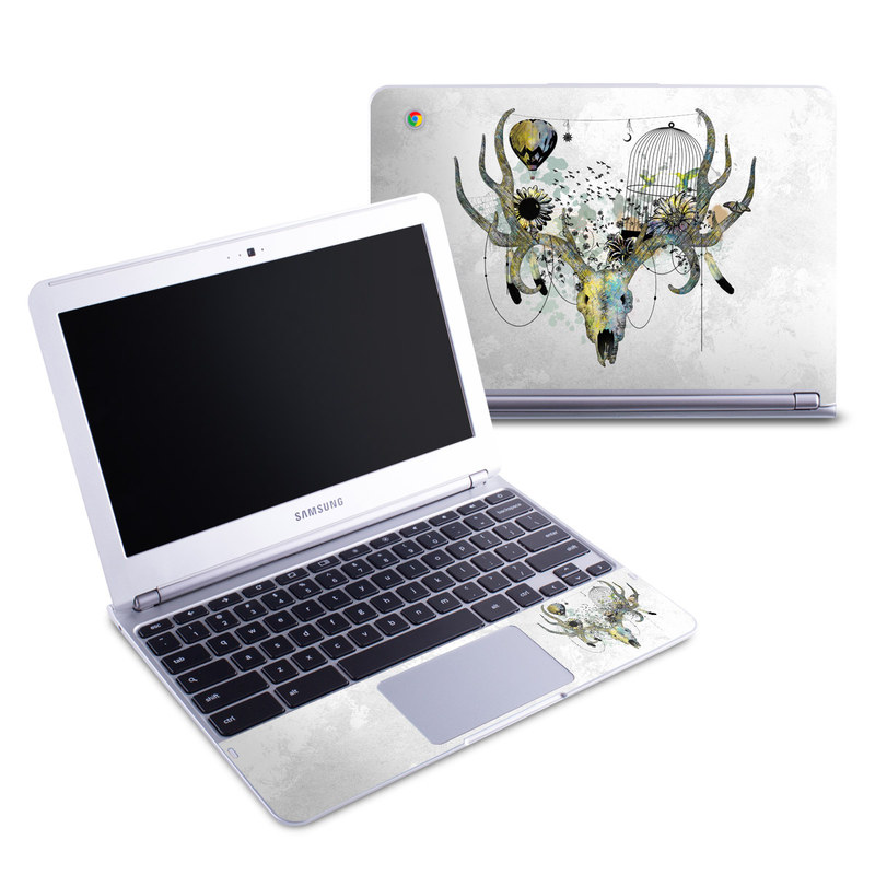 Of All Things Samsung Chromebook 1 Skin