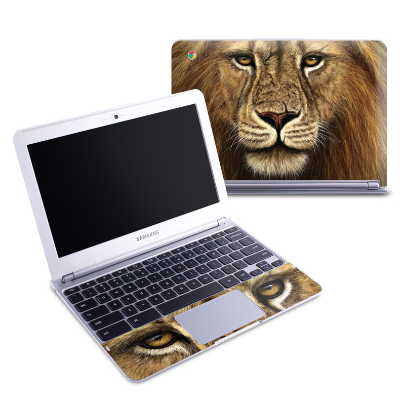 Warrior Samsung Chromebook 1 Skin