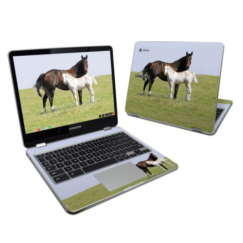 New Life Samsung Chromebook Plus 2017 Skin