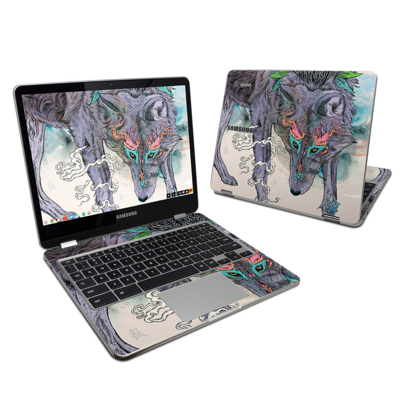 Journeying Spirit Samsung Chromebook Plus Skin