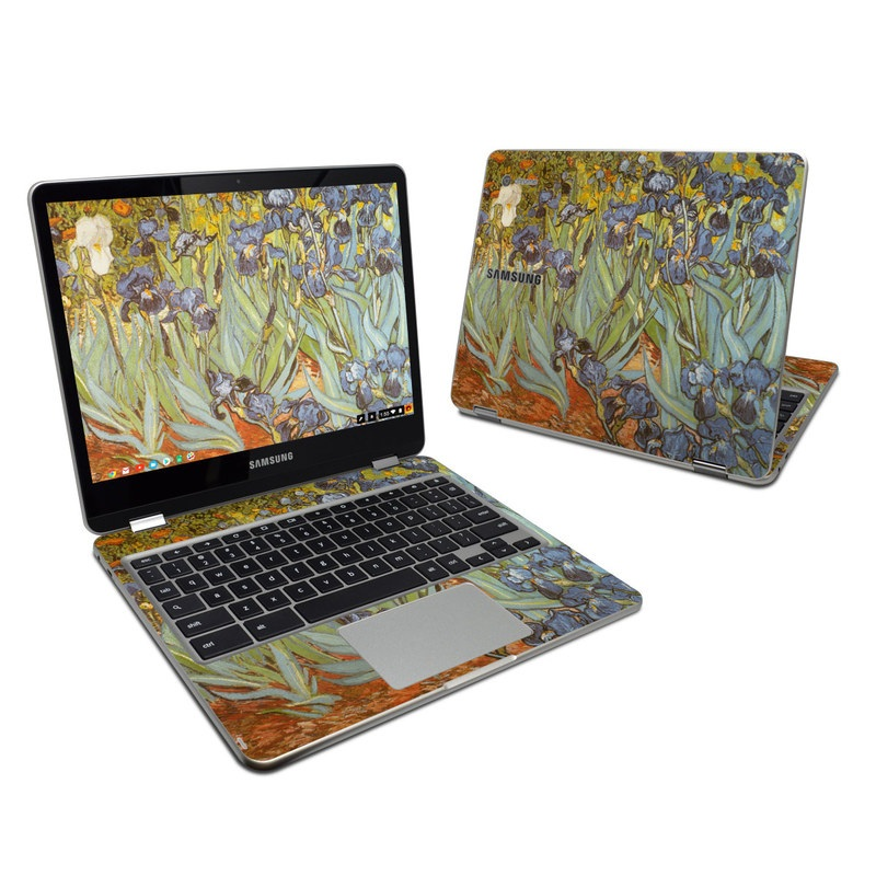 Samsung Chromebook Plus 2017 Skin design of Painting, Plant, Art, Flower, Iris, Modern art, Perennial plant with gray, green, black, red, blue colors